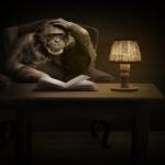 ヒトとチンパンジーの記憶を比較!意外なこととは?